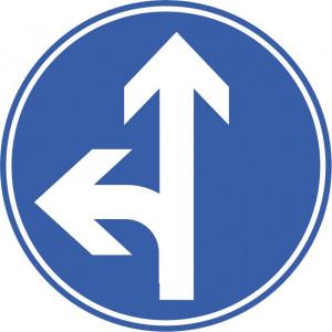 Vorgeschriebene Fahrtrichtung gerade und links